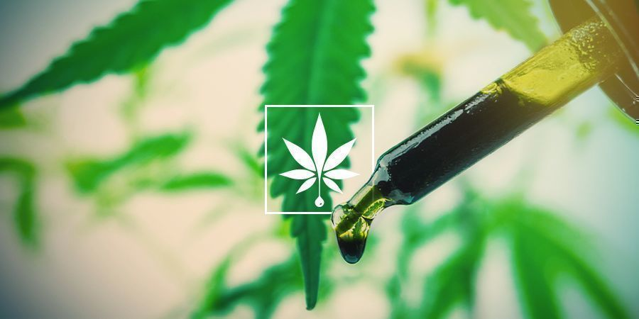 Which is the Best CBD Oil for Anxiety?